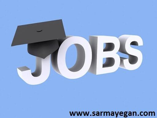 معرفی 19+3 فرصت شغلی جدید حسابداری و حسابرسی قابل توجه